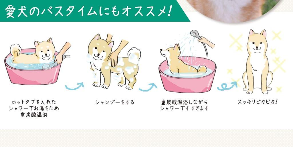 愛犬のバスタイムにもオススメ !ホットタブを入れたシャワーでお湯をため重炭酸温浴、シャンプーをする、重炭酸温浴しながらシャワーですすぎます、スッキリピカピカ!